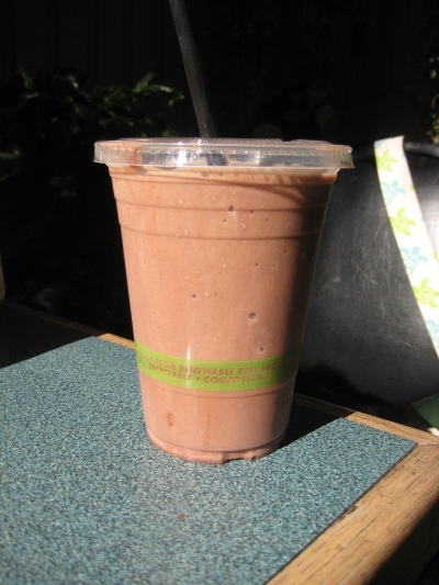 Evolution Fast Food Chocolate Shake